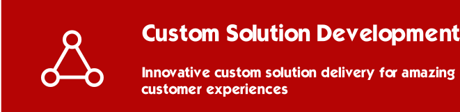 Custom Solution Development
